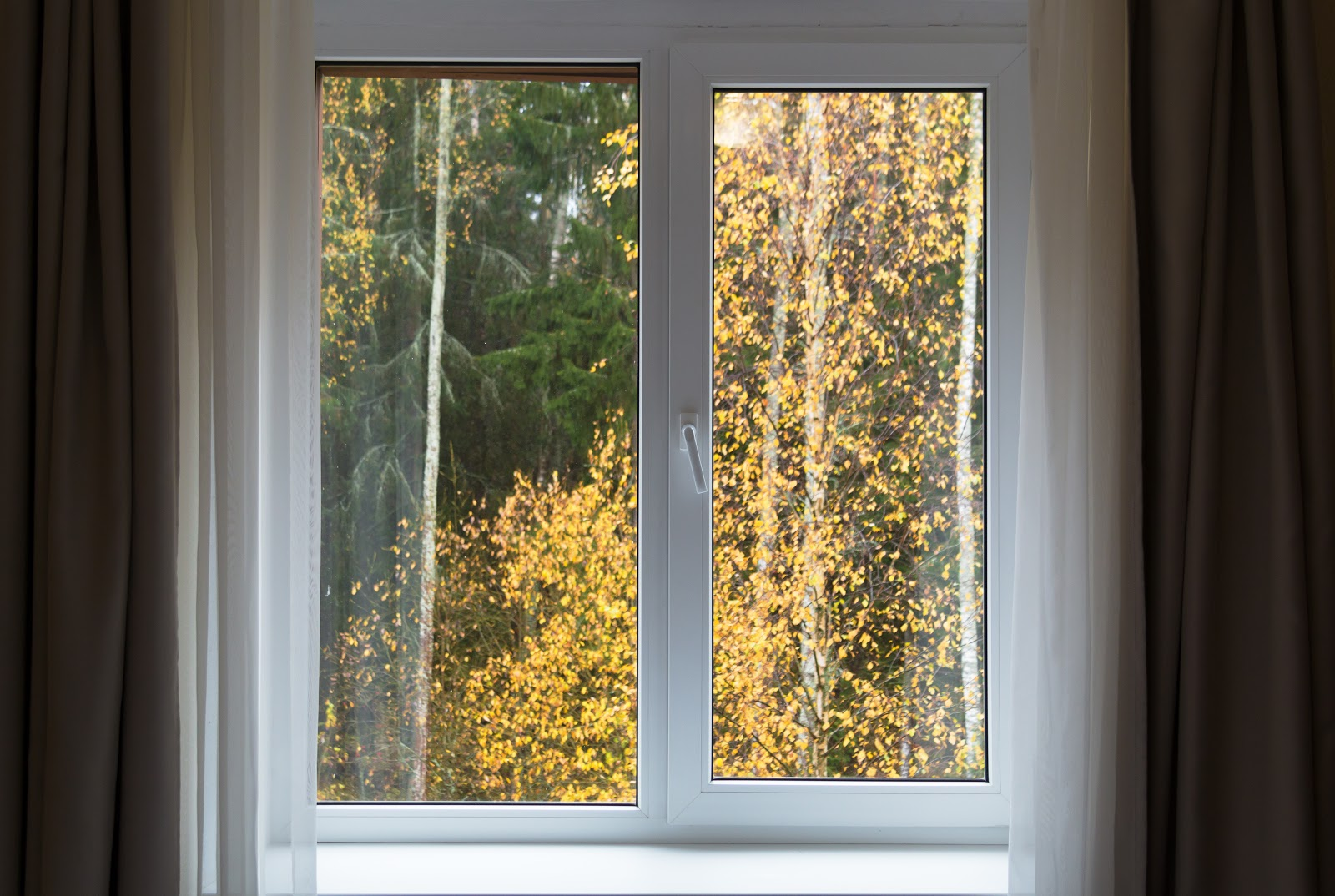 A casement window with charcoal drapes pushed aside, looking out into an autumn forest