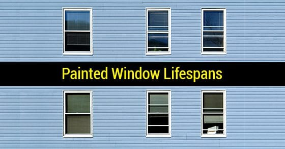 Painted-Window-Lifespans