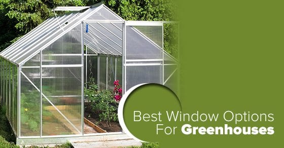 best-window