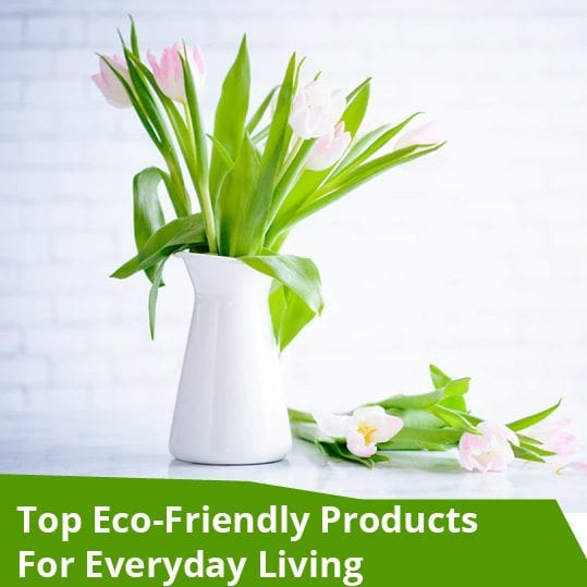Top Eco-Friendly Products For EveryDay Living