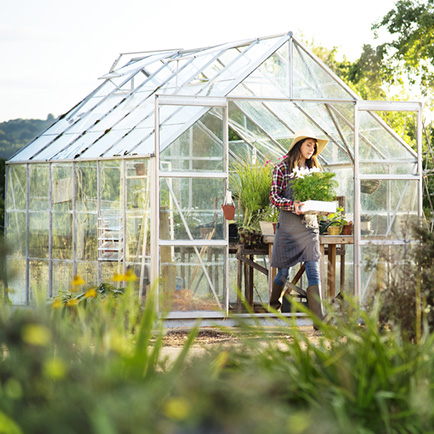 Woman coming out of her greenhouse holding a box of flowering plants