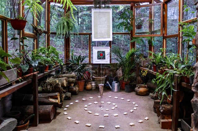 Greenhouse featuring old wooden windows