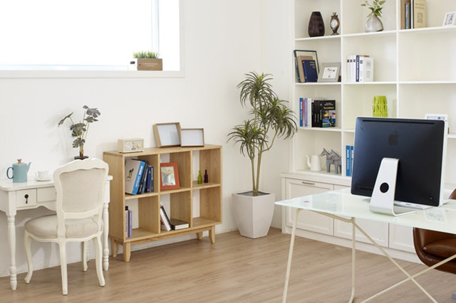 A bright home office with well-curated shelves