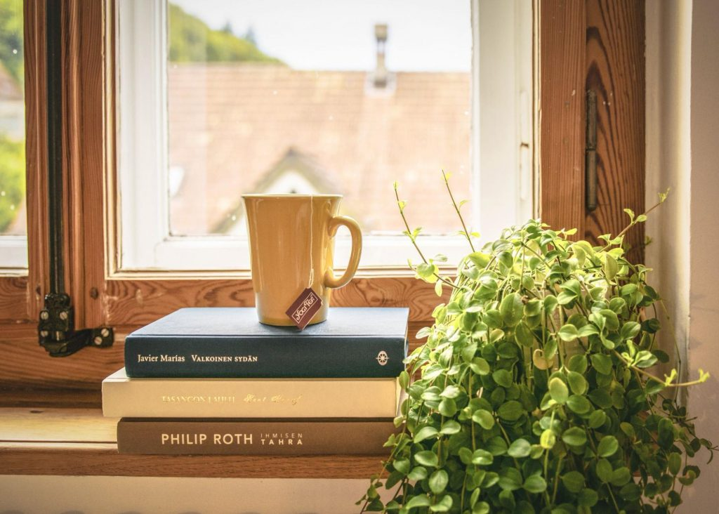 A windowsill with a potted plant and a stack of books