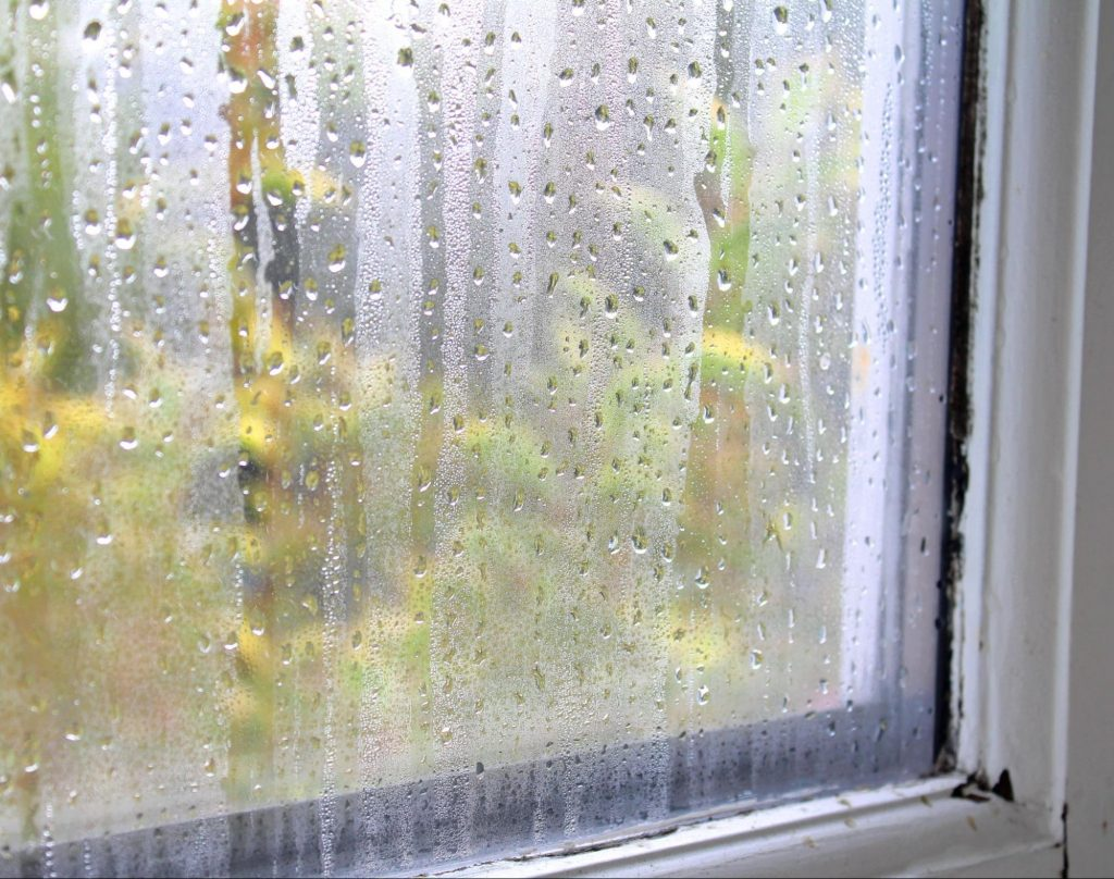 A closeup of one of the most common window warning signs: fog in between the glass